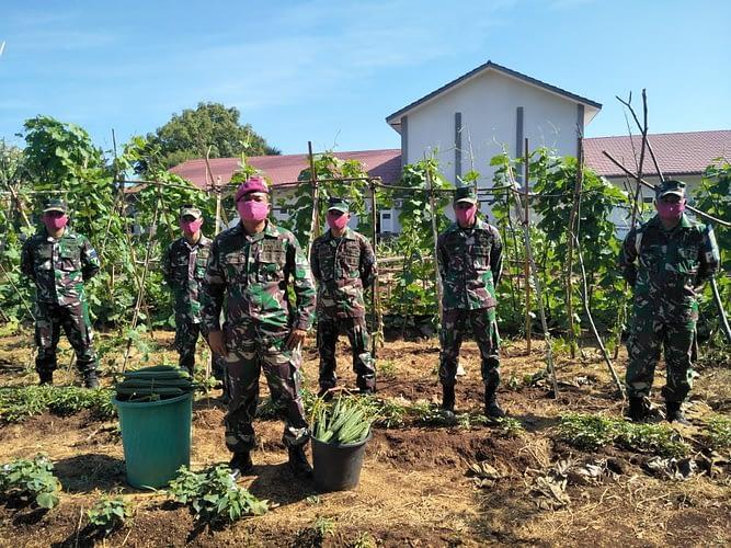 Program Ketahanan Pangan, Prajurit Yonmarhanlan VII Kupang Panen Perdana