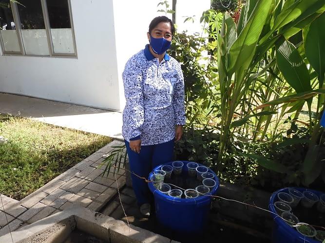Jalasenastri Ranting E Cabang 5 Dukung Program Ketahanan Pangan Saat Pandemi Covid-19