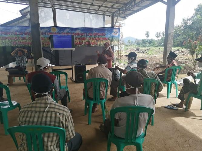 Kelompok Tani Binaan Yonif 9 Mar Memerima Penyuluhan dari UPT Pertanian Teluk Pandan Pesawaran
